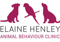 Animal Behaviour Clinic & Take The Lead Dog School | 3 Carsehead, Dalry KA24 4EB | +44 1294 833764